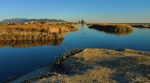 Ventura's new progressive stormwater permit bodes well for local wetlands